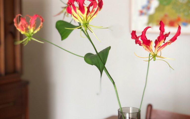 Gond Art in Japanese House – Residence of Mr. T.O.